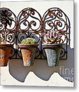 Vertical Cacti Garden Metal Print