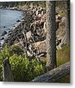 Vertical Photograph Of The Rocky Shore In Acadia National Park Metal Print