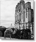 Vertical Tourist Trap Old Man With Camel On Approach To The Old Colloseum From Tourist Car Park El Jem Tunisia Metal Print