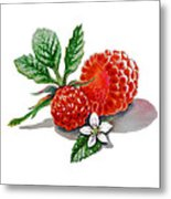Artz Vitamins A Very Happy Raspberry Metal Print