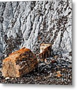 Very Old Logs Metal Print