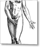 Vesalius: Female Nude Metal Print