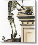 Vesalius: Skeleton, 1543 Metal Print