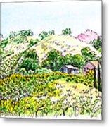 Viano Winery Martinez California Metal Print
