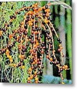 Vibrant Berries Metal Print