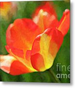 Vibrant Colorful Tulips Metal Print
