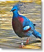 Victoria Crowned Pigeon In San Diego Zoo Safari In Escondido-california Metal Print