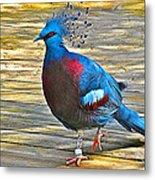 Victoria Crowned Pigeon In San Diego Zoo Safari In Escondido-california Metal Print