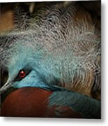 Victoria Crowned Pigeon In Tribal Decor Metal Print