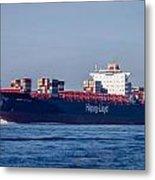 Vienna Express Ship Metal Print