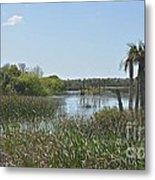 Viera Wetlands Metal Print