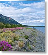View Four Kluane Lake From Cottonwood Campground Near Destruction Bay-yk Metal Print