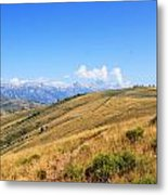View From A Horse Metal Print