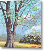 View From Barn Metal Print