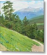View From Deer Mountain Metal Print