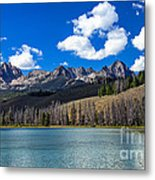 View From Little Redfish Lake Metal Print