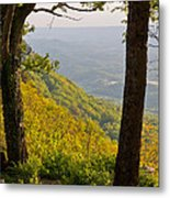 View From Lookout Mountain Metal Print