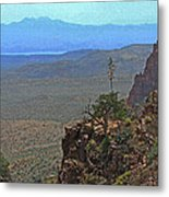View From Parker Creek Canyon Metal Print