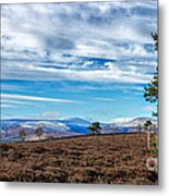 View From Scolty Hill 1 Metal Print