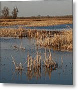 View From The Duck Blind Metal Print