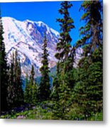 View From The Meadow Metal Print