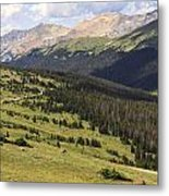 View From The Trail Ridge Road. Metal Print