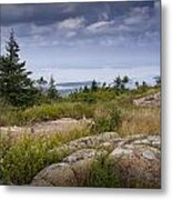 View From Top Of Cadilac Mountain In Acadia National Park Metal Print