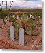 View Of Arizona From Boothill Cemetery Metal Print