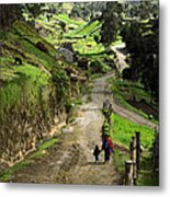 View Of Lupaxi Metal Print