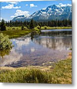 View Of Mount Tallac From Taylor Creek Beach Lake Tahoe Metal Print