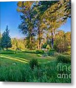 View Of Mt Gardner From Cottonwood Cottage Metal Print