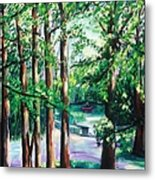 View Of Woodside Lake Metal Print