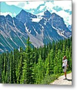 View On Trail To Lake Agnes In Banff Np-alberta Metal Print