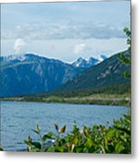 View One Kluane Lake From Cottonwood Campground Near Destruction Bay-yk   Metal Print