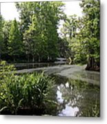 View Over Magnolia Plantation Lake Metal Print
