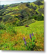 View Over Neverland Metal Print