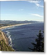 View Point Metal Print