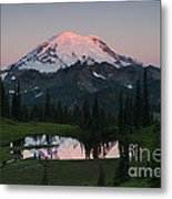View To Be Shared Metal Print