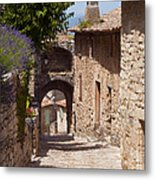 Village Lane Metal Print