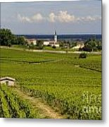 Village Of Aloxe Corton. Cote D'or. Burgundy. France Metal Print