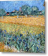 Field With Flowers Near Arles Metal Print