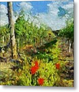 Vineyard And Poppies Metal Print