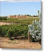 Vineyard And Winery Metal Print