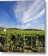 Vineyard Hut. Vineyard. Cote De Beaune. Burgundy. France. Europe Metal Print