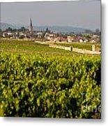 Vineyard In Front Of The Village Of Meursault. Burgundy Wine Road. Cote D'or.burgundy. France. Europ Metal Print by Bernard Jaubert