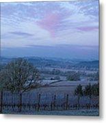 Vineyard Morning Light Metal Print