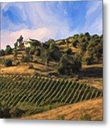 Vineyard Near Avila Beach Metal Print