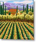 Vineyard With Olives Tuscany Metal Print