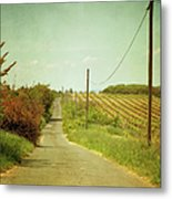 Vineyard With Telephone Polled At Road Metal Print