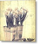 Vintage Daffodils Metal Print